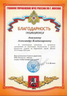 МЧС Анисимов
