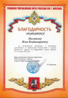 МЧС Цыганков